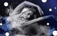Classical Grand Ballet – Jezioro Łabędzie