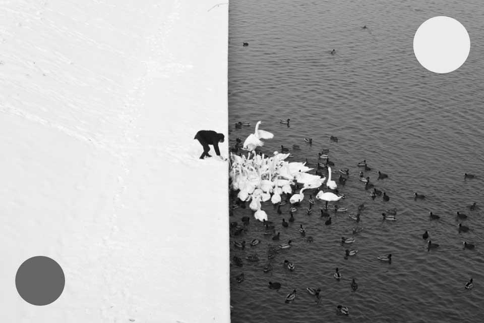 Harmony | wystawa Marcina Ryczek